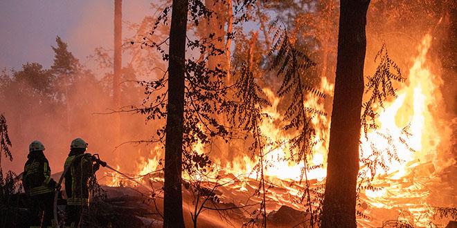 À mesure que le réchauffement climatique s'accentue, un nombre encore plus grand de régions seront touchées par des événements extrêmes tels que les incendies de forêt, et ces événements seront plus fréquents et plus intenses. (Image: Adobe Stock)